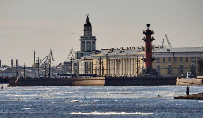 В Петербурге утвердили порядок предоставления субсидий малому бизнесу в 2019 году
